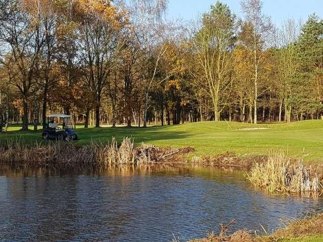 Golf (Small)