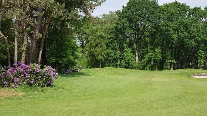 Golf 2 (Small)